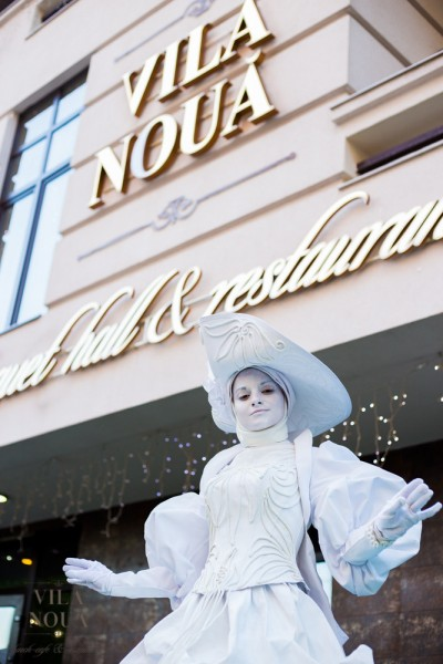 Vila Noua - это сочетание опыта и профессионального подхода к каждой детали