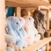 """Jucării din pluș Jellycat - cadou pentru orice ocazie de la """"Carousel"""""""