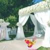 Organizarea nunții în Moldova cu Event Republic