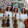 """""""ELITE – QUARTET"""" - magia şi noblețea muzicii pentru cele mai selecte evenimente"""