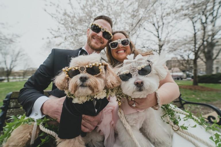 Animale de companie la nuntă – un nou trend al anului 2020
