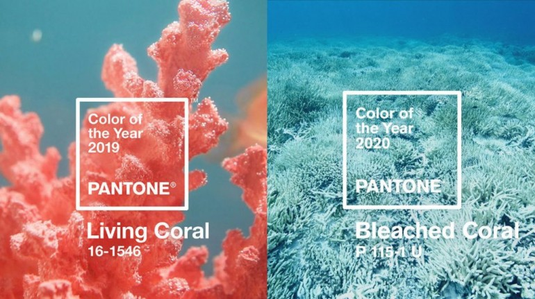 Culoarea anului pentru sezonul de nunți 2020