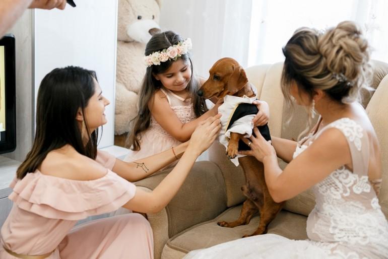 Patrupezi și animale de companie la nuntă - sesiuni foto cu totul speciale!