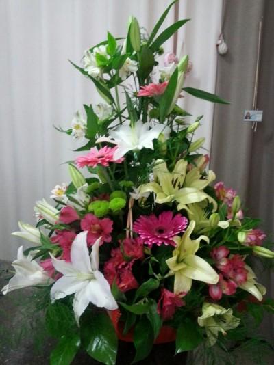 Coş cu flori și Orhidee